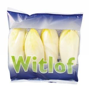 witlof