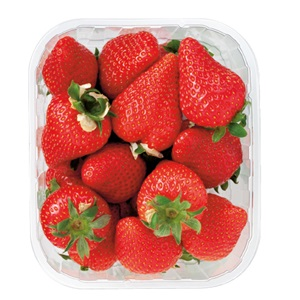 Hollandse aardbeien