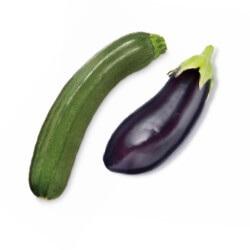 courgette of aubergine