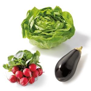 radijs, kropsla of aubergine