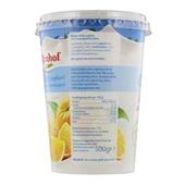 Almhof Yoghurt Sinaasappel 0% vet