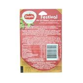 Duyvis Dipsaus Festival achterkant