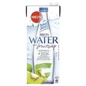 DubbelFrisss Bronwater met fruitsap kiwi-munt voorkant