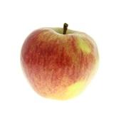 elstar appels achterkant