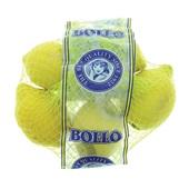citroenen voorkant