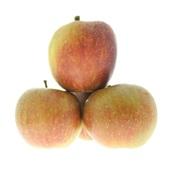 goudreinet appels voorkant