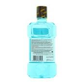 Listerine Mondwater Coolmint achterkant