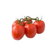 tomaat pomodori voorkant