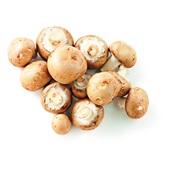 biologische kastanje champignons voorkant