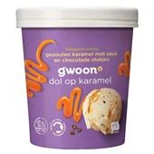 Gwoon biologisch roomijs  gezouten karamel met saus en chocoladestukjes voorkant