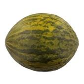 piel de sapo meloen voorkant