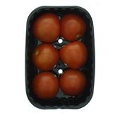 tomaat 6 stuks achterkant
