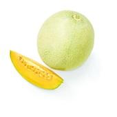 cantaloupe meloen voorkant