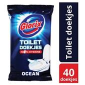 Glorix Toiletreinigingsdoekjes achterkant