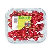 Driscoll's rode bessen voorkant