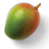 mango voorkant