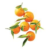 mandarijnen met blad voorkant