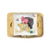 Egg Rep vrije uitloop eieren mais m 6 stuks voorkant