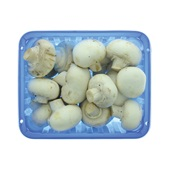 champignons wit voorkant