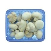 champignons wit achterkant