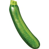 courgette voorkant